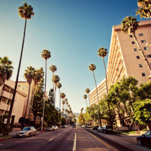 group tours of los angeles